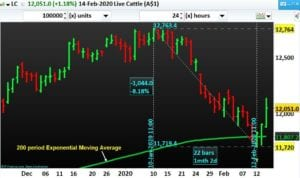 Commodity Live Cattle with 200 period Exponential Moving Average-NP-Financials