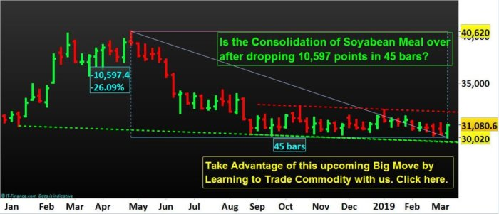 Commodity-Trading-Best-Education-NP-Financials-Soybean-Meal
