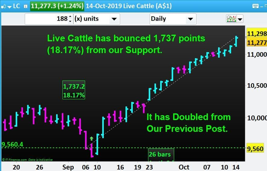 Live Cattle has bounced Up 1,737 points from our Support. It is Double from Previous.