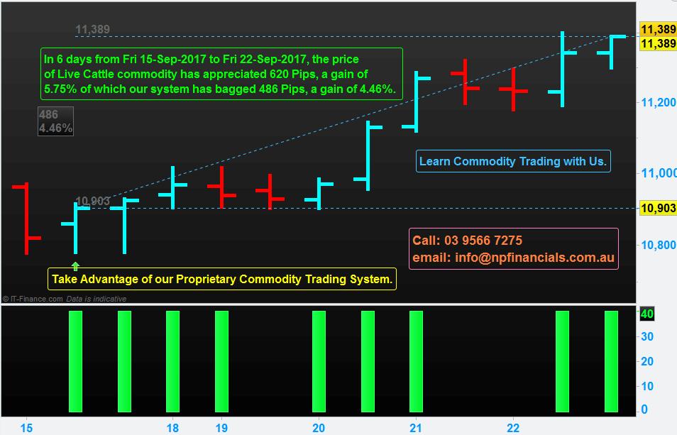 Proprietary Commodity Trading System
