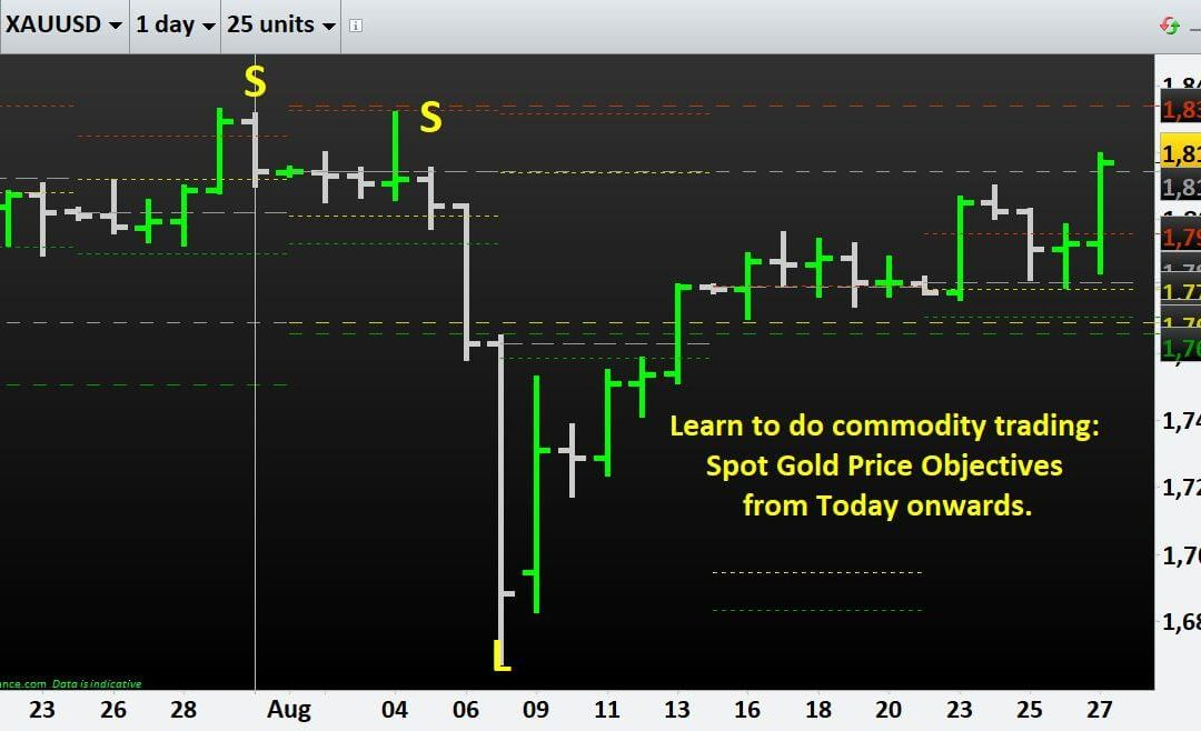 Learn to do commodity trading: Spot Gold Price Objectives from Today onwards.