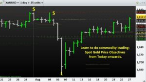 Learn to do commodity trading- Spot Gold Price Objectives from Today onwards.